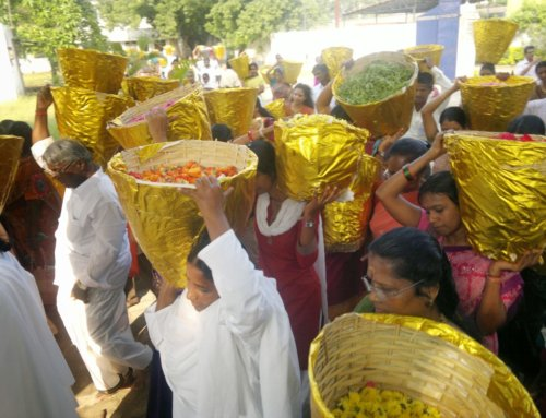 Indie – 6. – 19.11. 2012
